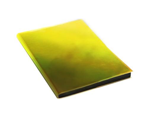 Ежедневник (недатированный) А5 136 листов Chameleon. Золотистый (интегральная обложка)