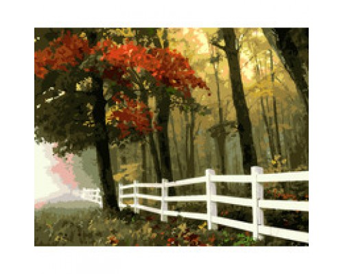 "Картина для раскрашивания по номерам ""ФРЕЯ"" ""Осенний лес"" (на холсте) 50 х 40 см"